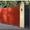 ЕВРО -забор. Ворота откатные. Ворота распашные.