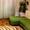 2-комнатная квартира НА СУТКИ с хорошим ремонтом.Wi-Fi,  документы #1204270