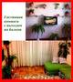 Комфортабельные апартаменты на сутки,  WI-Fi,  отчетные документы